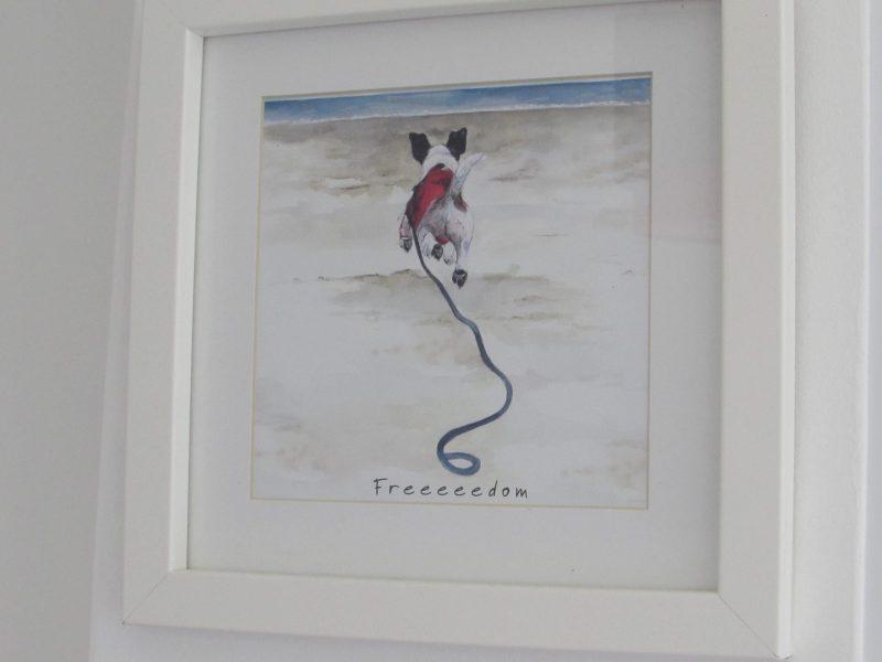 Birchwood house Paignton Bed Breakfast Dog friendly